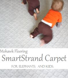 95 Best Carpet For Stairs Images Stair Runners Carpet