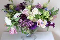 lilac privet berry - Google Search