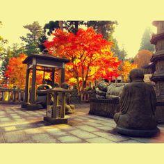 秋の雲辺寺  autumn temple