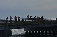 Between jumps; Big Bridge; Edgartown, Martha's Vineyard, Massachusetts, USA.  August 2014.