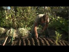 Edible City: Grow the Revolution [documentary] http://ediblecitythemovie.com/