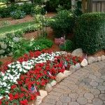 Annuals A Cure For Spring Fever Yard Ideas Blog YardShare Com
