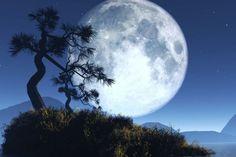 El planeta Tierra tiene dos lunas