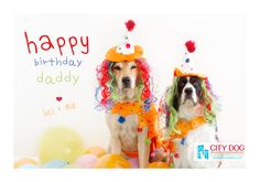 Happy Birthday - This post contains some of the best collection of Happy Birthday Pics With Dogs. Wish you all going to like these all pictures.