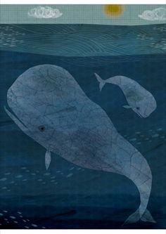 Blue Whale Poster, Frann Preston-Gannon