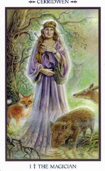 The Magician in the Animals Divine Tarot.  Deck by Lisa Hunt, published in 2005 by Llewellyn.