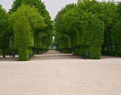 Schönbrunn Palace Gardens in Vienna.