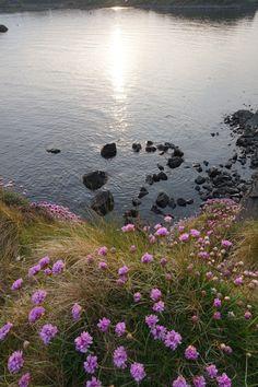 Beautiful Islay...