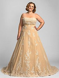 A-line Plus Sizes Wedding Dress - Champagne Chapel Train Strapless Chiffon