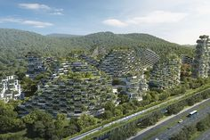 China is building a smog-eating 'forest city' filled with tree-covered skyscrapers - Business Insider Nordic