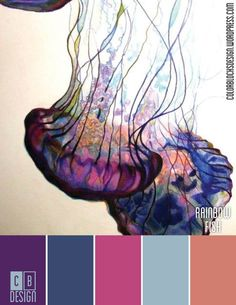 Rainbow Fish | Color Blocks Design