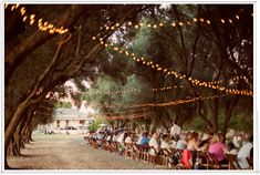 really long table, in the middle of trees and fairy lights? Yes please!