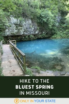 Hike to a beautiful hidden spring in Missouri with the bluest water in the state. The hiking trail is considered easy and family friendly and it comes alive with wildflowers and wildlife in warmer months, making it a perfect day trip for nature lovers. Best Bucket List, Us Road Trip, Hidden Beach, Blue Springs, Travel Bugs, Usa Travel, Natural Wonders, Wildflowers, Day Trips