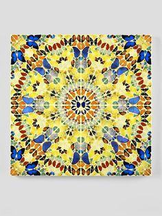 Damien Hirst - Butterfly Kaleidoscope