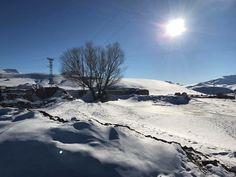 Fotoğraf: Veysel Aras Van, Gürpınar Arındı Köyü.