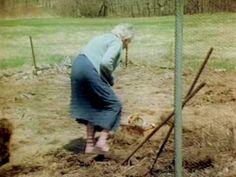 """Ruth Sout """"csodálatos kertje"""" – Nincs szükség még kapálásra sem, mégis terem?"""