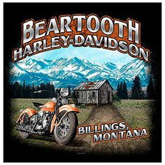 cool Harley-Davidson Treasured Women's T-Shirt, Made in USA Harley Davidson Dealers, Harley Davidson Art, Harley Davidson T Shirts, Harley Dealer, Custom Screen Printing, Buttery Soft Leggings, Online Checks, Womens Golf Shoes, Online Shopping For Women