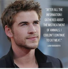 Animal Matters International. preach Lifestyle Club, Vegan Lifestyle, Mercy For Animals, News Memes, Why Vegan, Vegan News, Vegan Animals, Liam Hemsworth, Gluten Free Diet
