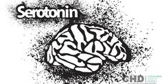 Serotonin syndrome is a condition that occurs when the level of serotonin increases in our body. Learn more about its symptoms, treatments and prevention. Serotonin Syndrome, Cos, Wealth, Depression, Health