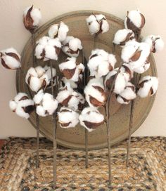 5 12 Natural Cotton Boll Sprays Natural Cotton by TheWreathShed