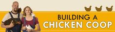 DIY chicken coop plans the best and cheap plans for coop