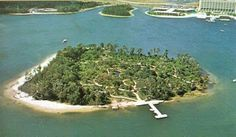 Discovery Island Disney Abandoned | Our Someday Family...: Disney Did You Know...