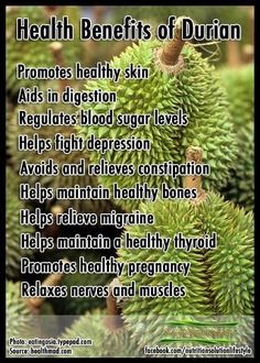 Health Benefits of Durian. #paleo #durian #fruit http://paleoaholic.com/