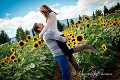 Sunflower couple photography. Photography by Christina. Southern Arizona. http://www.photographybycina.com