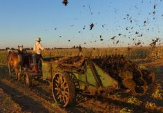Off-The-Grid Secrets Of The Amish - http://www.offthegridnews.com/2014/03/26/off-the-grid-secrets-of-the-amish/