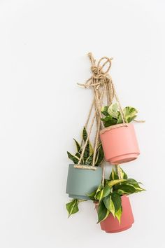 Plant One on Me: A $5 Hanging Planter Hack