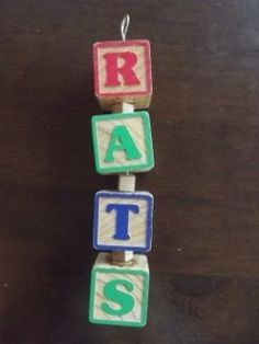 Homemade Things for Pet Rats - Letter Block Wooden Chew Toy Diy Rat Toys, Diy Bird Toys, Toy Diy, Pet Rodents, Pet Rats, Raccoons, Homemade Toys, Homemade Things, Rat Cage Accessories