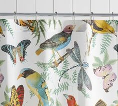 Covered with intricate artwork in a rainbow of hues, our Fauna Bird Print Shower Curtain is a whimsical addition to the bath. It coordinates with any color and with our Fauna Bedding for a complete look. Bird Shower Curtain, Vinyl Shower Curtains, Shower Curtain Rings, Pottery Barn Shower Curtain, Shower Accessories, Room Planner, Up House, Curtains With Rings, Mirror Art