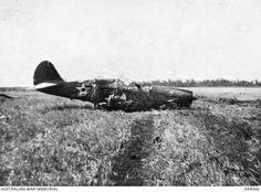P- 40E shot down - Darwin 19 Feb 1942