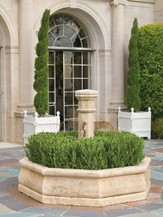dwarf italian cypress trees in citrus boxes #Grand Mansions #Luxury Homes