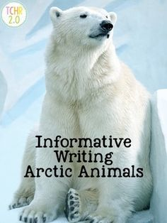 This product will guide your children as they research an Arctic animal of their choice. It contains pages they can use to take notes and write a final copy. These are all black and white. Students will shade a diagram of the continents to show where their animal lives.