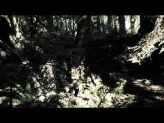 Star Trek: Phoenix - Cloak & Dagger Part I (Full Version) - YouTube