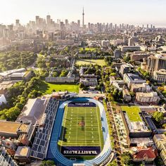 has once again been ranked as the number one school in Canada & among the top 10 public universities in the world. Hit the link in… University Of Toronto, Ontario, Toronto Images, Toronto Life, Toronto Canada, Number One, Wanderlust Travel, Paris Skyline, Dogs