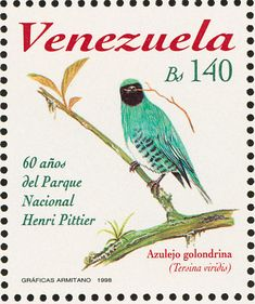 Swallow Tanager stamps - mainly images - gallery format