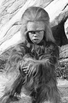 Cha Ka from Land of the Lost...awww!!  I just  loved this little monkey boy!!