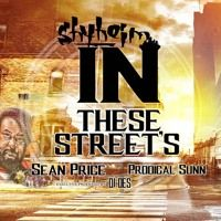 Shyheim Ft. Sean Price , Prodigal Sunn - In These Streets Exec. Prod by Dj Des by DJDES on SoundCloud
