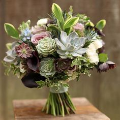 Day 19 of a #monthofsucculents - A textural bouquet of echeveria and hellebores from Jessica's May 2014 wedding at Mt. Airy. #cincinnatiwedding #cincinnatibride #cincinnatiweddings #cincinnatiflorist #cincinnatiweddingflowers #ohiobride #ohiowedding