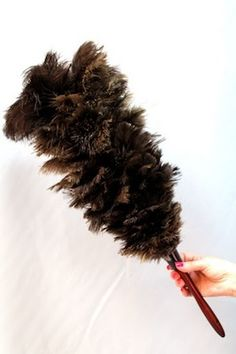 FlyLady Extreme Duster. ONLY from FlyLady. The only feather duster that not only works, but beats the pants off of every other type of duster.