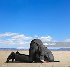 Image result for head in the sand images