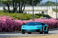 Lamborghini Aventador / Blu Glauco by Attila-Le-Ain Most Expensive Car, Latest Cars, Car In The World, Lamborghini Aventador, Car Ins, Dream Cars, Super Cars, Vehicles, Channel