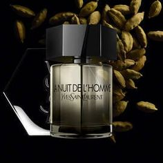 5 Best Fall Colognes for Men - The Blondissima