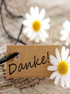 Dankbarkeit lernen: Wie ein kleines Wort unser Leben verbessert