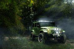 Ultimate Auto Jungle Beast | William Stern.