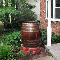 Urban Homesteading Harvest Rainwater