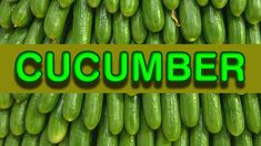 Cucumbers are extremely beneficial for overall health, especially during the sum. - Cucumbers are extremely beneficial for overall health, especially during the sum… Cucumbers are - Dog Food Recipes, Cooking Recipes, Get Gift Cards, Leather Repair, Dog Food Brands, Chicken Pasta Recipes, First Drive, Easy Food To Make, Shopping