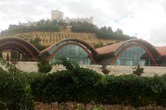 Vivir la vendimia en la Ribera de Duero http://revcyl.com/www/index.php/cultura-y-turismo/item/8110-vivir-la-vendimi
